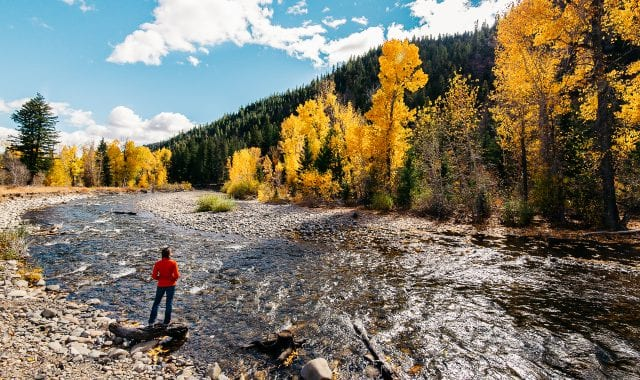 A guide to leaf peeping in Sun Valley, Idaho
